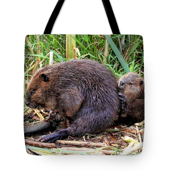 Baby Beaver With Mother Tote Bag
