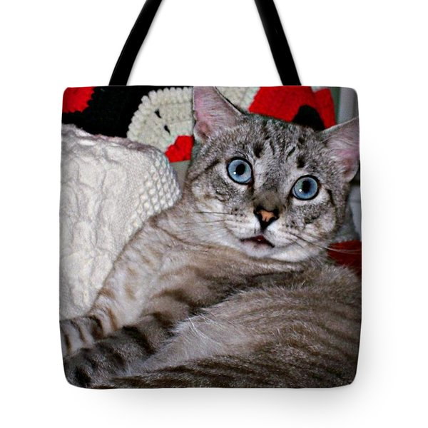 Baby Blue Tote Bag by Barbara S Nickerson