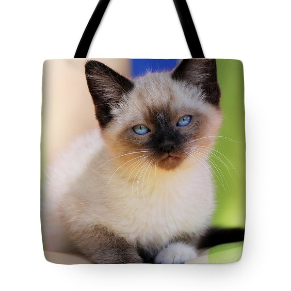 Tote Bag featuring the photograph Baby Blues by Melanie Lankford Photography