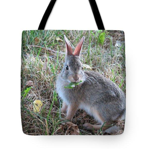 Baby Bunny Eating Dandelion #02 Tote Bag by Ausra Huntington nee Paulauskaite