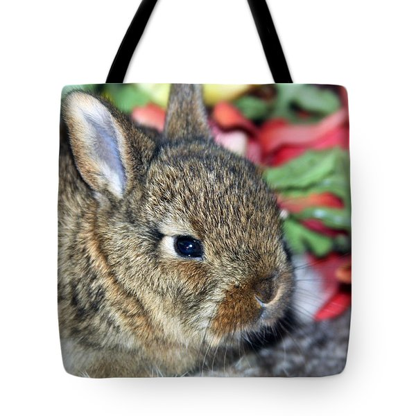 Baby Bunny Rabbit Tote Bag by Karon Melillo DeVega