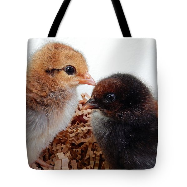 Baby Chicks Tote Bag by Pamela Walton