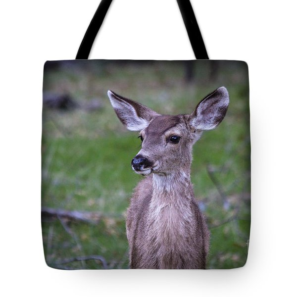 Tote Bag featuring the photograph Baby Deer by Vincent Bonafede