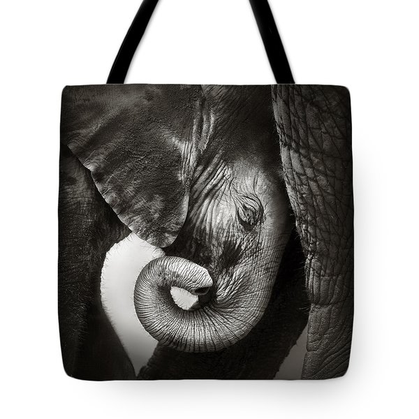Baby Elephant Seeking Comfort Tote Bag by Johan Swanepoel