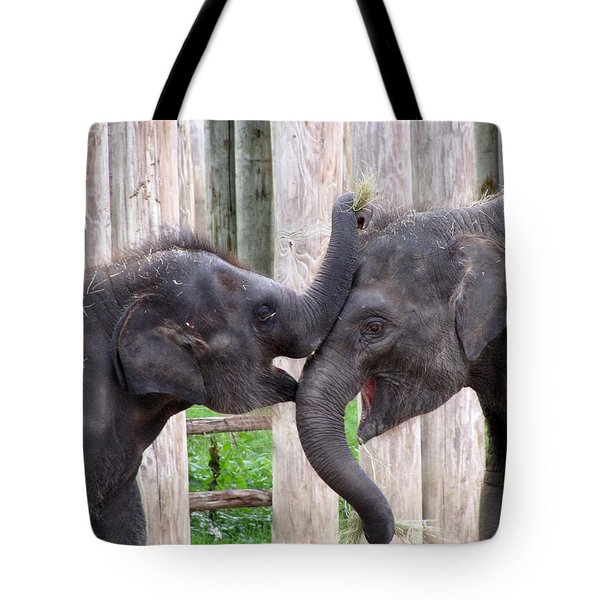 Baby Elephants - Bowie And Belle Tote Bag