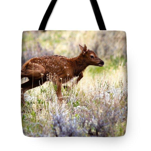 Baby Elk Tote Bag
