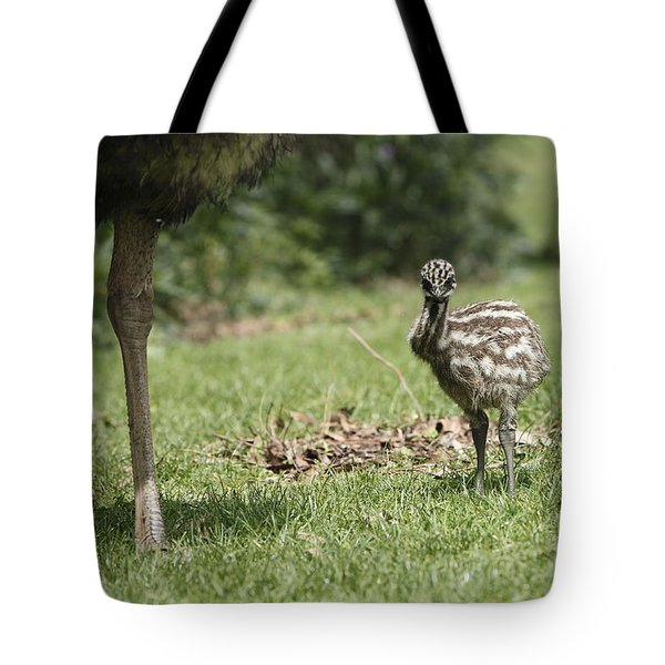 Baby Emu Tote Bag by Craig Dingle