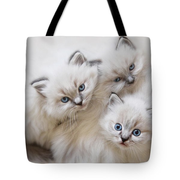 Baby Faces Tote Bag by Lori Deiter
