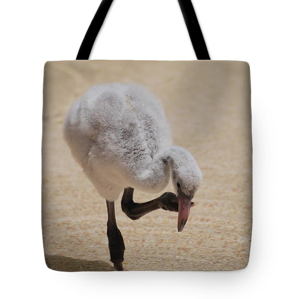 Baby Flamingo Tote Bag by DejaVu Designs