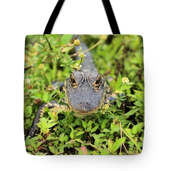 Baby Gator Tote Bag by Adam Jewell