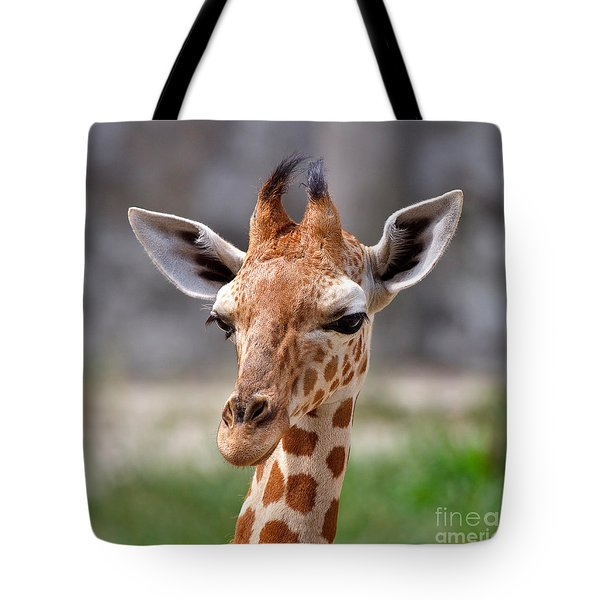 Baby Giraffe Tote Bag by Louise Heusinkveld