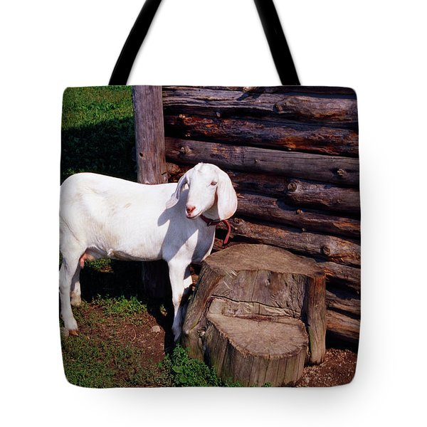 Baby Goat By Weathered Wood Outbuilding Tote Bag