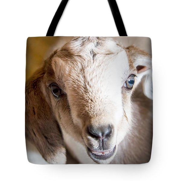 Baby Goat Face Tote Bag