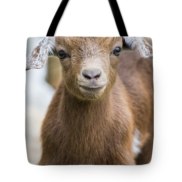 Baby Goat Tote Bag by Shelby  Young