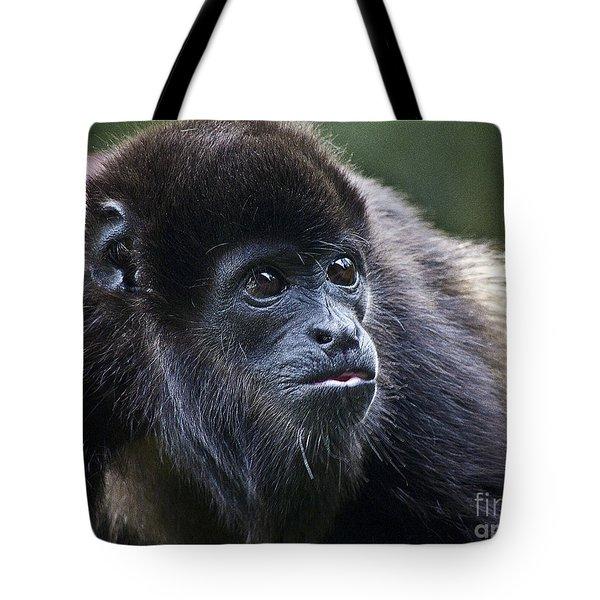 Baby Howler Monkey  Tote Bag by Heiko Koehrer-Wagner