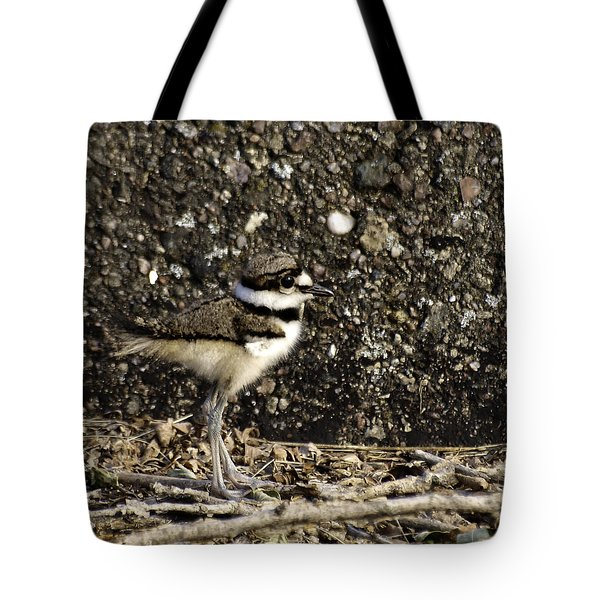 Baby Killdeer 1 Tote Bag