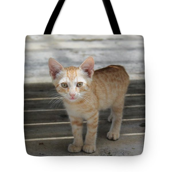 Baby Kitty Tote Bag by Catie Canetti