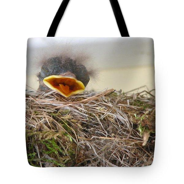Baby Phoebe Tote Bag