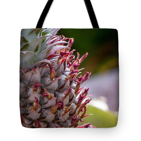 Baby White Pineapple Tote Bag by Denise Bird