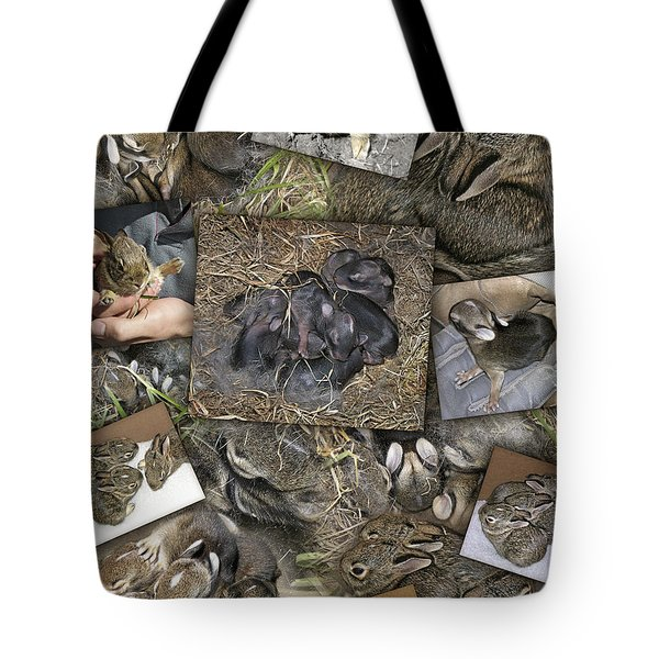 Baby Rabbits Tote Bag