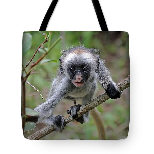 Baby Red Colobus Monkey Tote Bag
