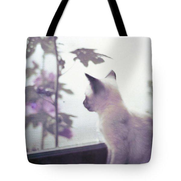 Baby Siamese Kitten Tote Bag