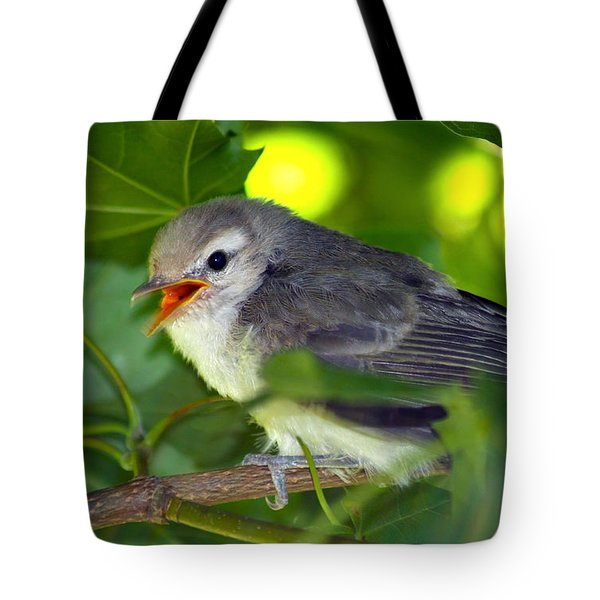 Baby Sparrow In The Maple Tree Tote Bag by Karon Melillo DeVega