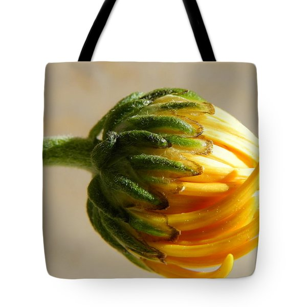 Tote Bag featuring the photograph Baby Spider Mum by Deb Halloran