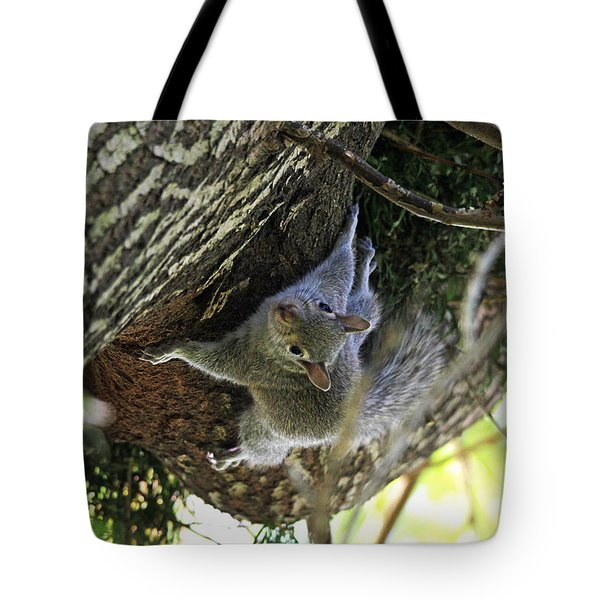 Tote Bag featuring the photograph Baby Squirrel On The Loose by Trina  Ansel
