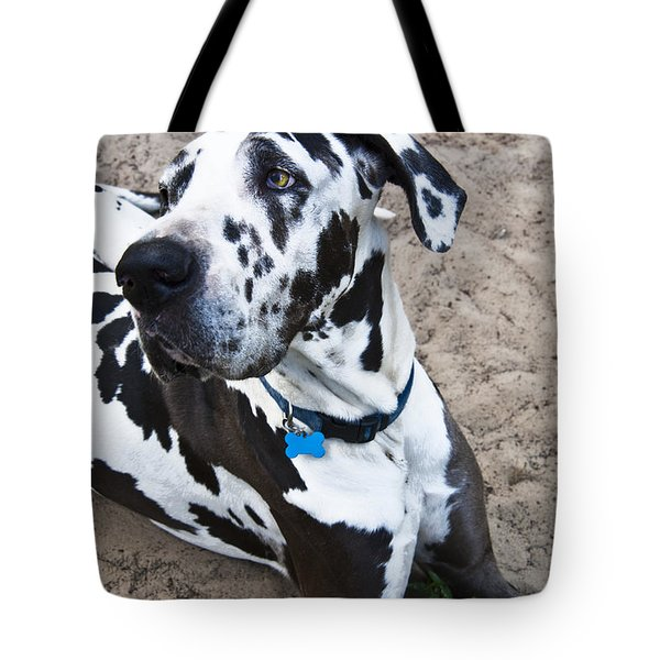 Bacchus The Great Dane Tote Bag by Sharon Cummings