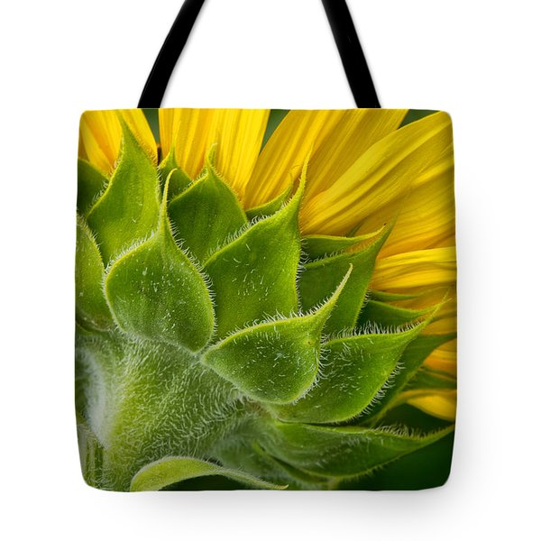 Back Of Sunflower Tote Bag
