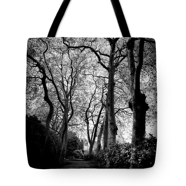 Back Road West Tote Bag