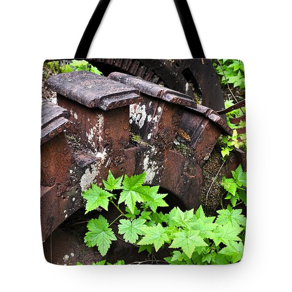 Tote Bag featuring the photograph Back To The Forest by Cathy Mahnke
