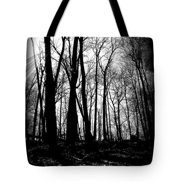 Backdunes In April Tote Bag by Michelle Calkins