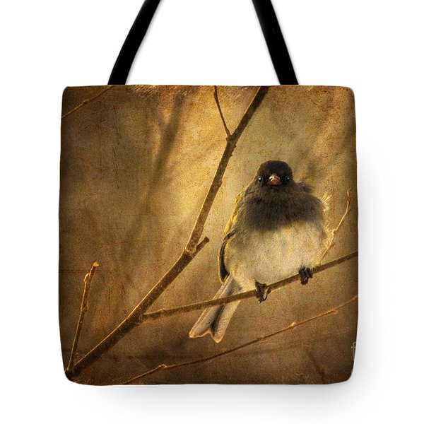 Backlit Birdie Being Buffeted  Tote Bag