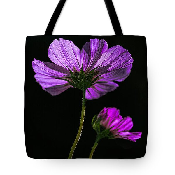 Backlit Blossoms Tote Bag