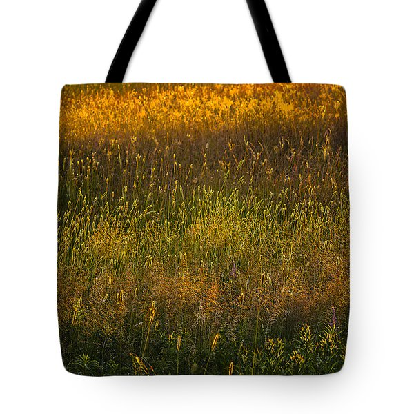 Tote Bag featuring the photograph Backlit Meadow Grasses by Marty Saccone