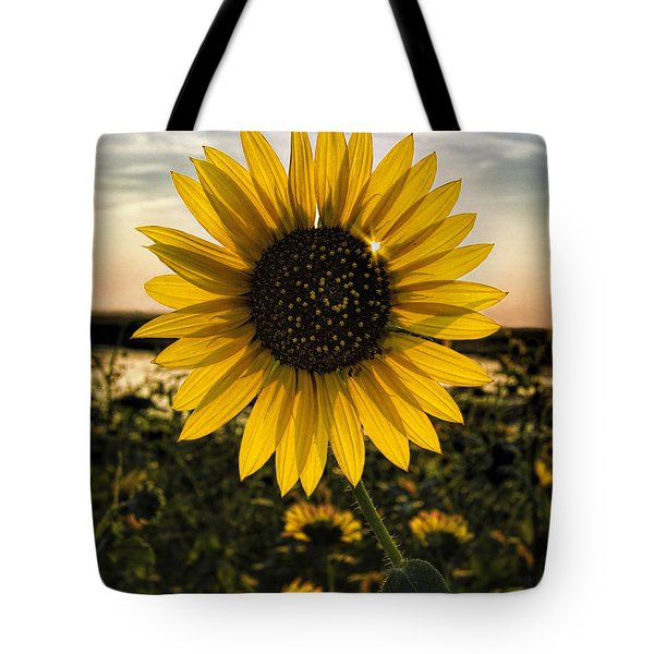 Backlit Sunflower Tote Bag