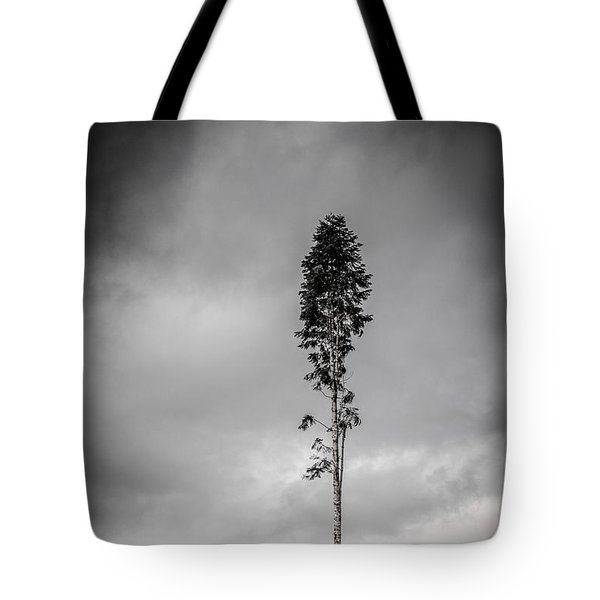 Lone Tree Landscape  Tote Bag