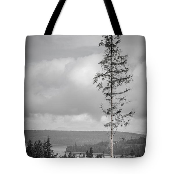 Tall Tree View Tote Bag