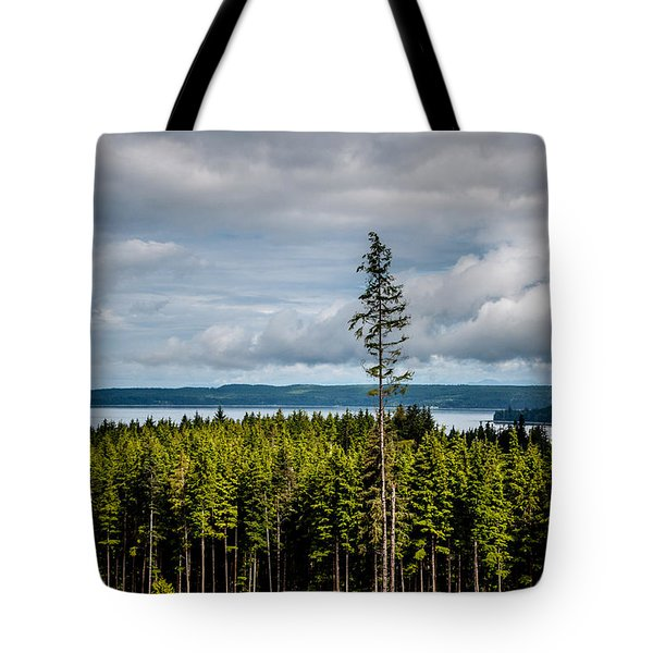 Logging Road Ocean View  Tote Bag