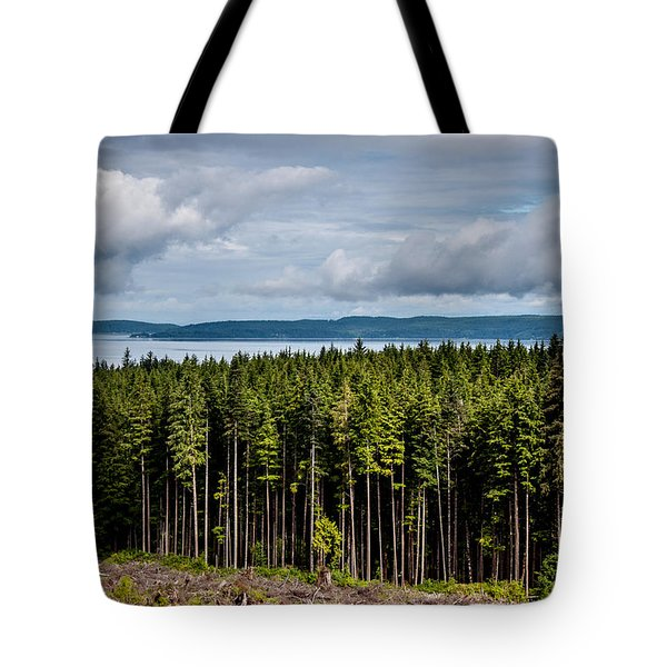 Logging Road Landscape Tote Bag