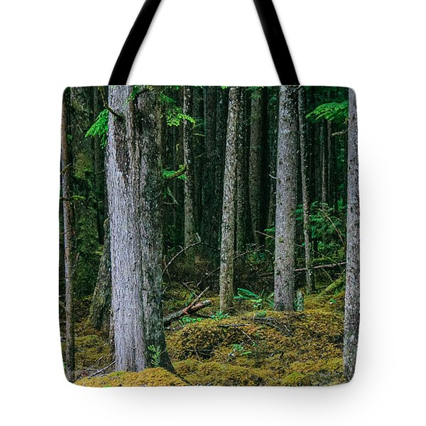 Inside View Backroad Forest Tote Bag