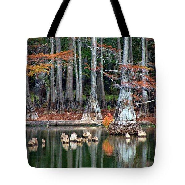 Backwaters Tote Bag