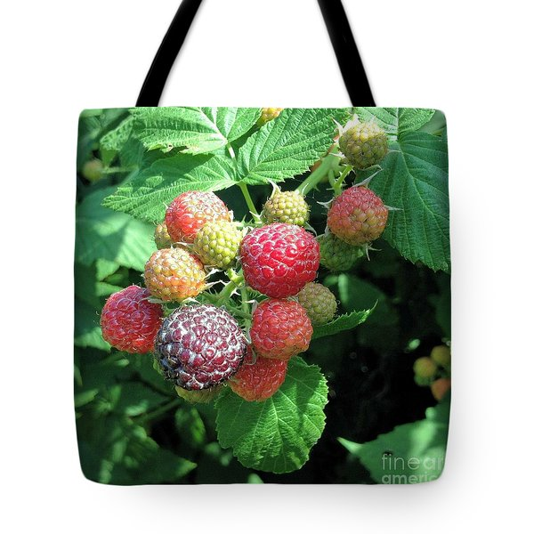 Tote Bag featuring the photograph Fruit- Black Raspberries - Luther Fine Art by Luther Fine Art