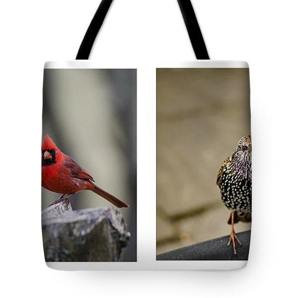 Backyard Bird Series Tote Bag by Heather Applegate