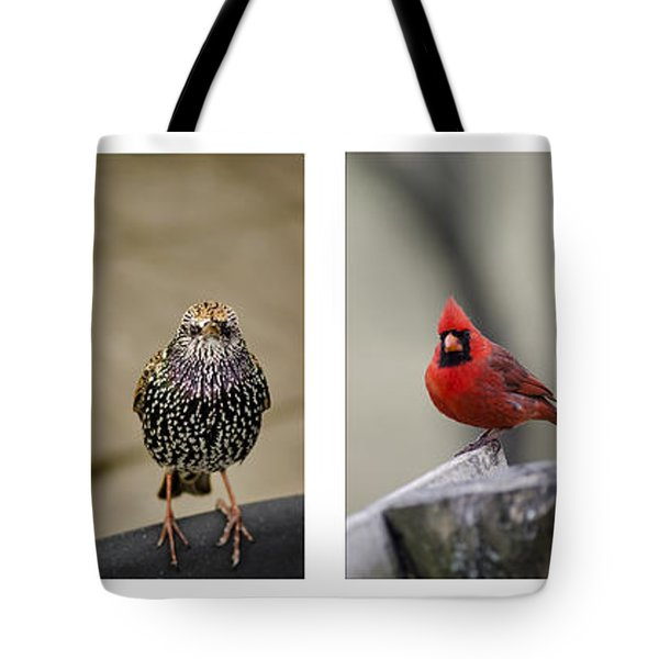 Backyard Bird Set Tote Bag by Heather Applegate