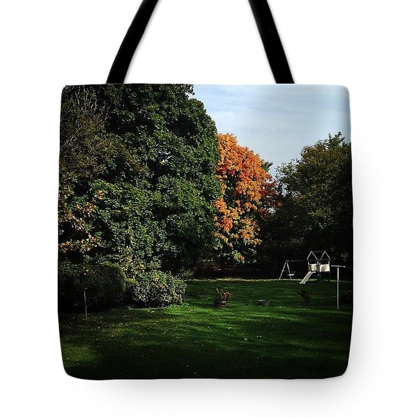 Mornings In The Fall Tote Bag