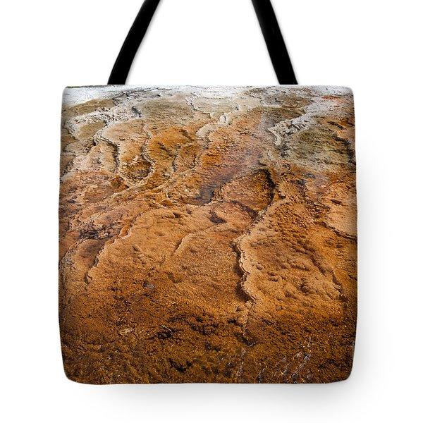 Bacterial Mat 7 Tote Bag by Dan Hartford