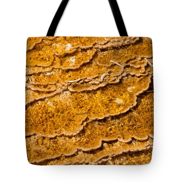 Bacterial Mat - 9 Tote Bag by Dan Hartford